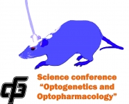 Optogenetics and Optopharmacology